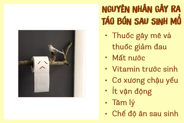 chua-tao-bon-sau-sinh-mo