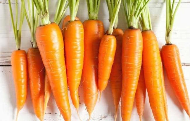 Cà rốt chứa nhiều chất xơ và các chất dinh dưỡng tốt cho cơ thể